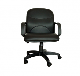 Viva Medium Back Chair